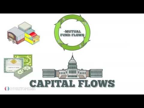 What is Capital Flows ?