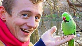 Youtube's WORST Travel Vlogger