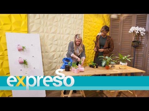 Décor – How To Make a Hanging Mug Herb Garden