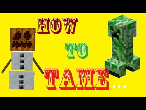 Minecraft: How To Tame a SNOWGOLEM!