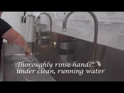 wgsc hand washing training video 7 13 16