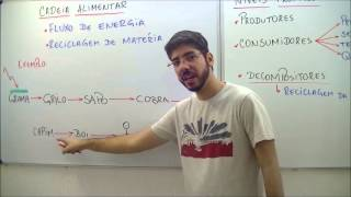 AULA BIOLOGIA  FUNDAMENTOS DE ECOLOGIA - ABR 13 - PROF. FELIPE JARDIM