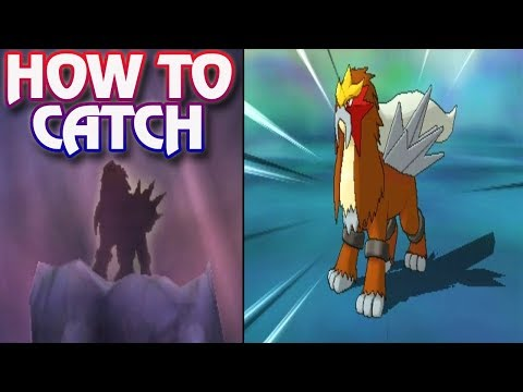 Pokemon Ultra Sun and Ultra Moon - How To Catch Entei (Legendary Dogs)