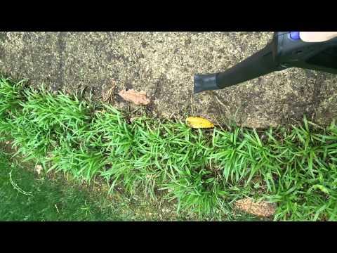 Lowes Kobalt 40 Volt leaf blower.