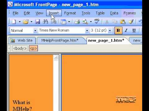 Microsoft Office FrontPage 2003 Add a check box to a form