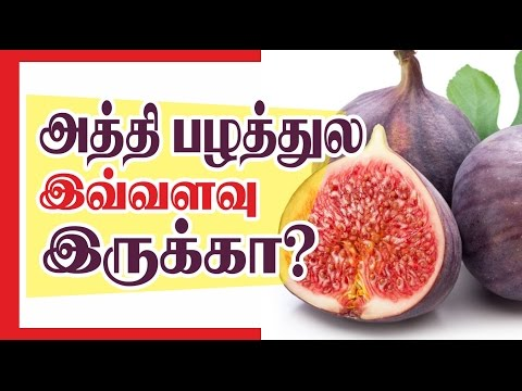 Health tips in tamil _ Benefits of Fig fruits  அத்திபழத்தின் நன்மைகள்