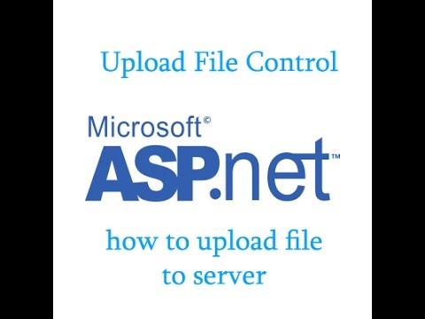 Asp.net File Upload to server tutorial using vb.net Uploadfile control