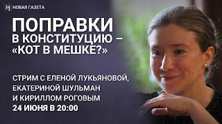 Как проголосовать за «кота в мешке» — поправки в Конституцию. Лукьянова, Шульман, Рогов