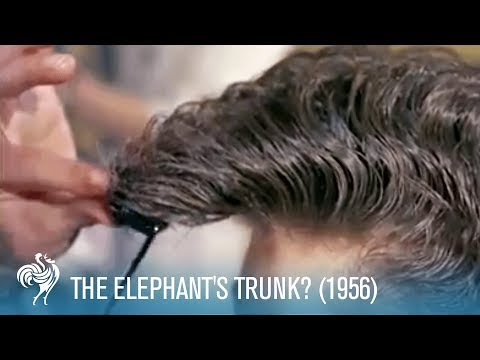 The Elephant's Trunk?: 1950's Men's Hair Styles (1956) | British Pathé