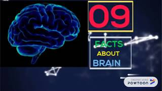 Download BRAIN: 9 Facts AMAZING(in detail) Video