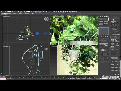 Modeling a realistic plant with 3ds Max - Tip of the Week
