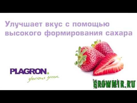 Стимулятор Green Sensation 100мл ( PLAGRON) Для цветения растений.