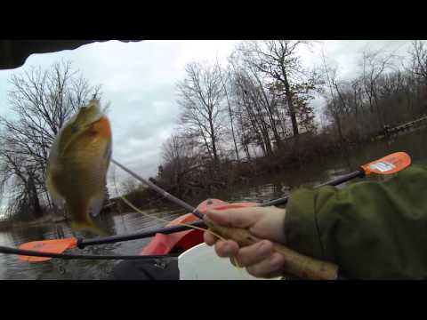 Kayak Fly Fishing [Uncut POV] Bluegills December 14, 2015 GOPRO #74