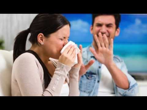 What is Hayfever?