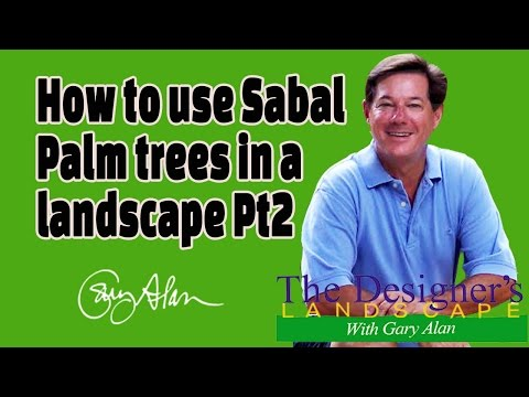 How to use Sable Palms in a landscape Pt 2 Designers Landscape#609