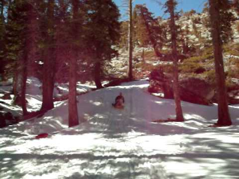 Sledding & camping in  Sonora Pass, California