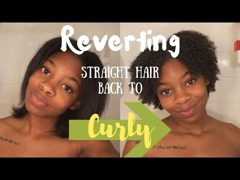 WATCH MY HAIR REVERT! | Straight Back to Curly with No Damage!!!