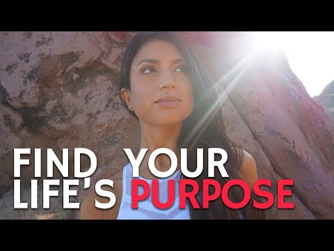 How to Find Your Life's Purpose | Figure Out Your Next Step
