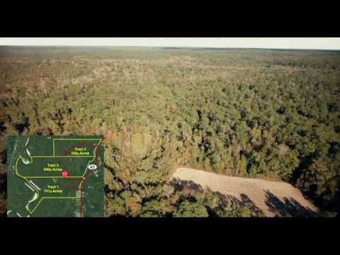 Hunting Land Auction Offered in 4 Tracts in Pearl River County, MS Selling to the Highest Bidder