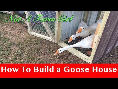 How to Build a Goose House