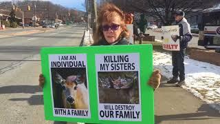 Deer Hunt Protest