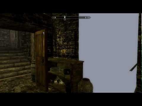 The Elder Scrolls V : Skyrim - Bug mur à Faillaise