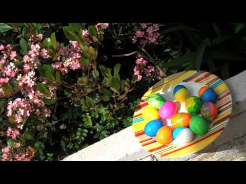 Happy Easter 2011: How to color eggs