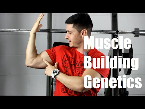 Do You Have Good or Bad Muscle-Building Genetics?
