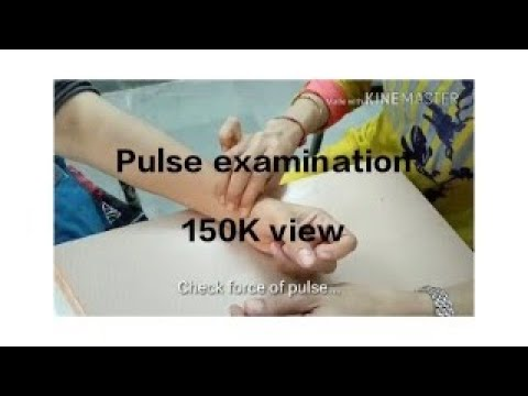 Examination of arterial pulse