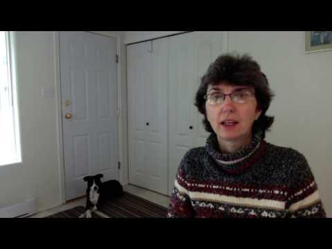 Service Dog Training Institute Intro video