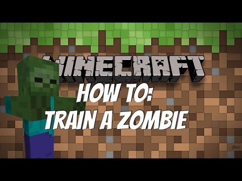 How To: Train a Zombie