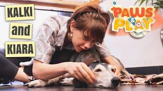 PAWS & PLAY: Kalki and Kiara I Pet-friendly restaurants