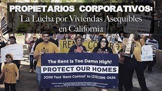 Propietarios Corporativos: La Lucha por Viviendas Asequibles en California • BRAVE NEW FILMS