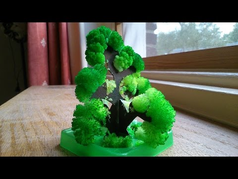 Chemistry experiment 54 - Growing a Crystal Tree (time-lapse)