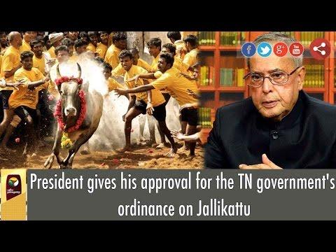 Jallikattu Ban Lifted: President Pranab Mukherjee Approves TN Government's Ordinance