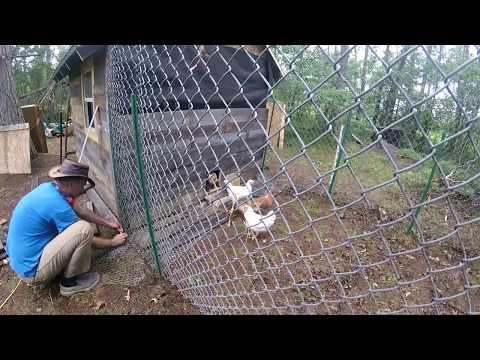 Garden Work & Building A Chicken Run & Still Raining