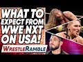 What To Expect From WWE NXT On USA Network WWE NXT Sept 11 2019 Review WrestleTalk