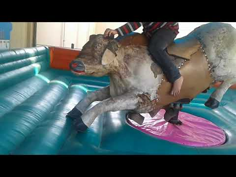 I rode a rodeo bull.IT WAS HARD