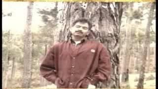 HUMSAFAR   Aamir Saleem