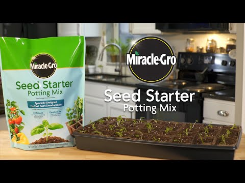 How to Use Miracle-Gro® Seed Starter Potting Mix to Start Seeds Indoors
