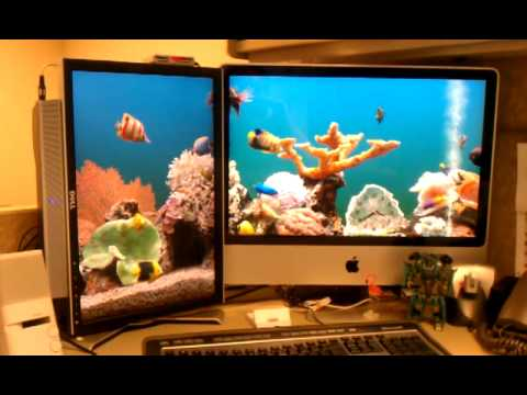 Dual screen aquarium screen saver.
