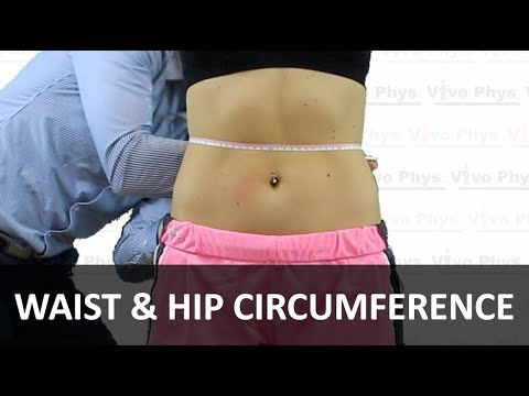 Waist and Hip Circumference