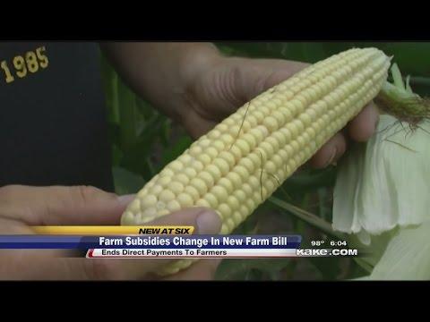 Farm subsidies change in new farm bill