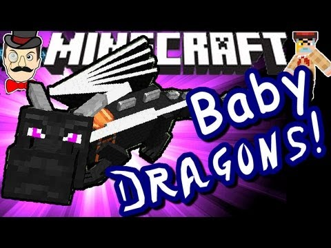 Minecraft BABY ENDER DRAGONS! Hatch & Fly!