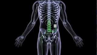 How does interventional pain management help with acute and chronic pain?