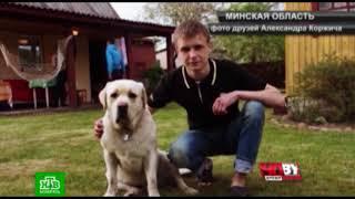 Президент Беларуси взял под личный контроль расследование гибели солдата в Печах