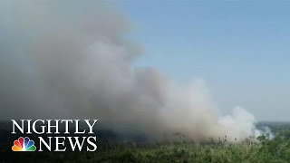 Download Staggering Number Of Fires Ravaging Amazon Rainforest | NBC Nightly News Video