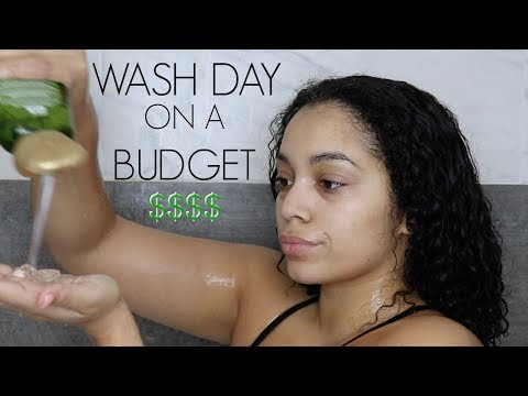 Moisturizing Wash Day Under $20 | Natural Hair Care on a Budget