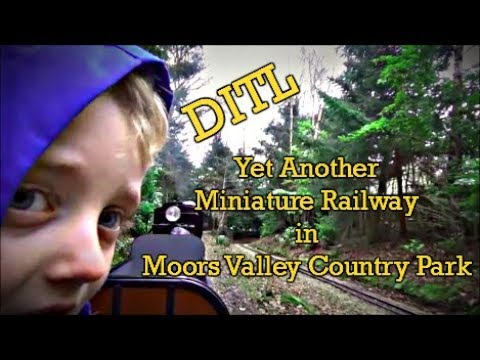 DITL - Another Miniature Railway in Moors Valley Country Park
