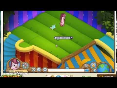 How to get free tickets (summer carnival) - Animal jam glitch